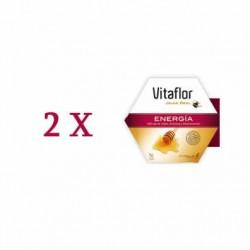 Vitaflor Energía duplo 2x20 viales